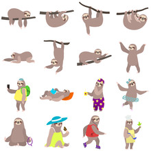 Sloth Icons Set. Flat Set Of Sloth Vector Icons For Web Design