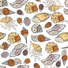 Vector  Seamless Pattern With Hand Drawn Seashells.