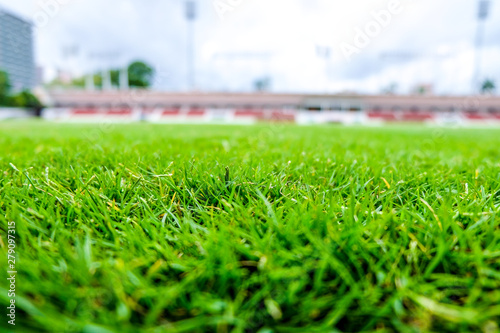 Recess Fitting Stadion Fresh green lawns are suitable for add illustrations of products. This picture has space for putting description.