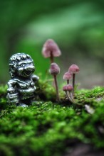 Troll And Mushrooms
