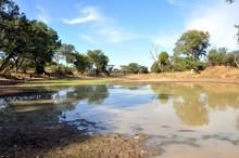 Waterhole In The African Savanna