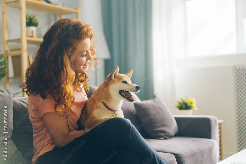 Fototapety, obrazy: Pretty redhead woman is hugging cute doggy sitting on couch in apartment smiling enjoying beautiful day with beloved animal. People and pets concept.