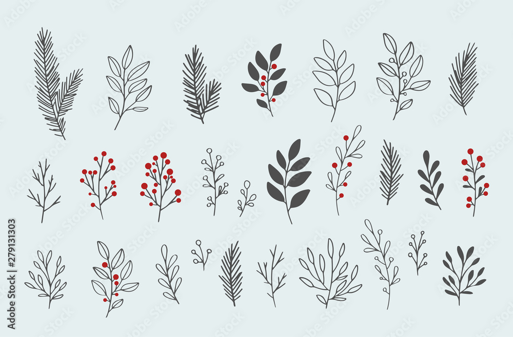 Fototapeta Hand drawn vector winter floral elements. Winter branches and leaves. Hand drawn floral elements. Vintage botanical illustrations.