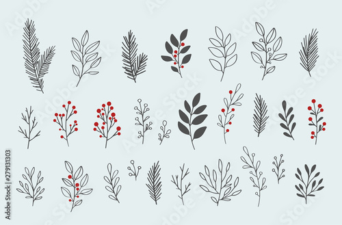 Hand drawn vector winter floral elements Fototapete