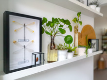 White Hanging Shelves With Mul...