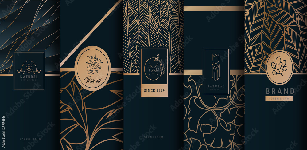 Fototapeta Collection of design elements,labels,icon,frames, for logo,packaging,design of luxury products.for perfume,soap,wine, lotion.Made with Isolated on black background.vector illustration