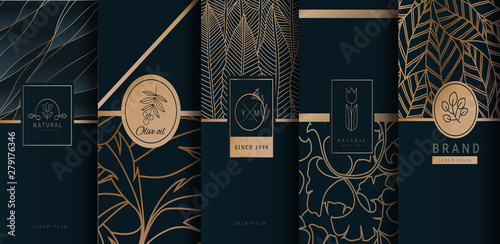 Fotografía  Collection of design elements,labels,icon,frames, for logo,packaging,design of luxury products