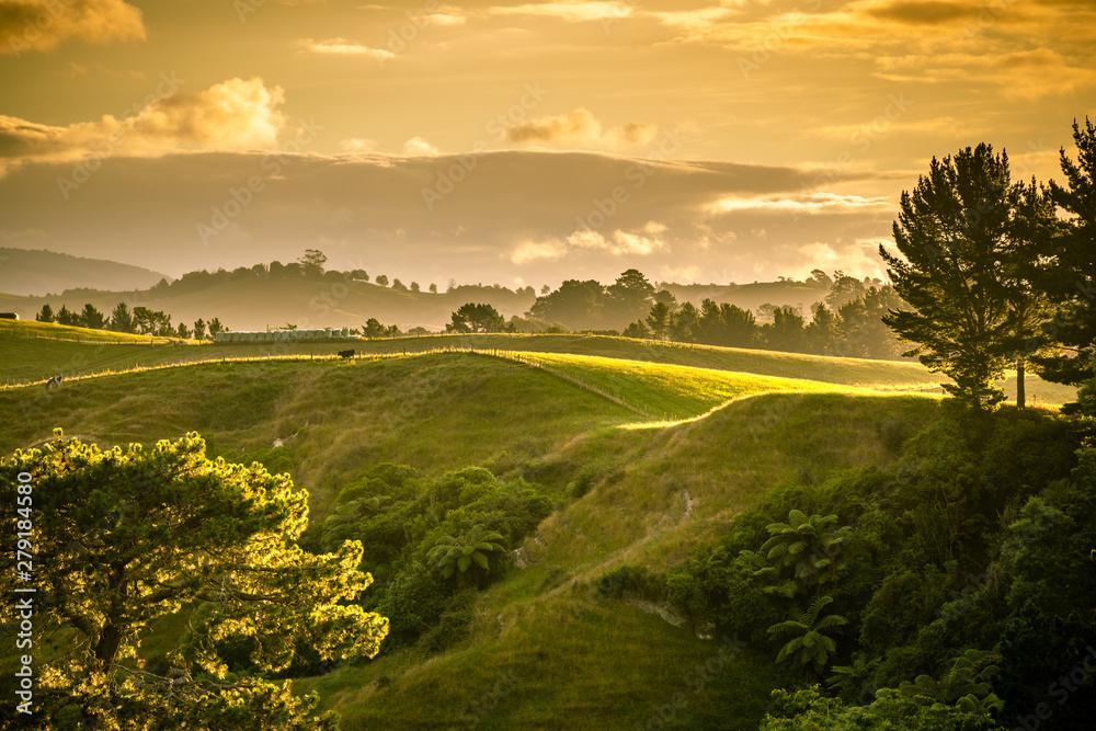 Fototapety, obrazy: sunset landscape New Zealand north island