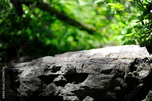 Valokuva  rocher