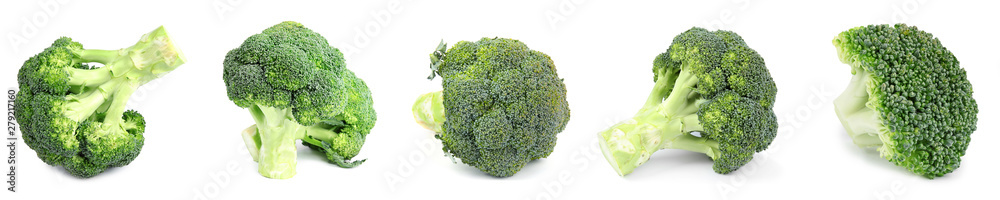 Fototapety, obrazy: Set of fresh green broccoli on white background. Banner design