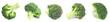 Leinwandbild Motiv Set of fresh green broccoli on white background. Banner design