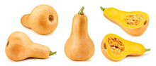 Butternut Pumpkin And Slice Clipping Path