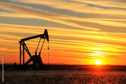 Fototapeta Pump jack in the oil field at sunset obraz