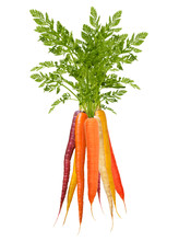Colorful Rainbow Carrots On Wh...