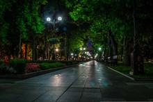 A Night In The Park. Street Li...