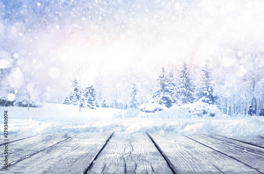 Fototapety, obrazy: Winter christmas scenic landscape with copy space. Wooden flooring strewn with snow in forest  with fir-trees covered with snow on nature.