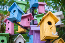 Colorful Bird Houses