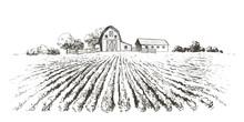 Rural Landscape Field . Hand D...