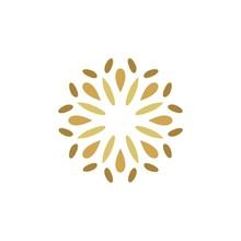 Star Flower Ornamental Pictograph Logo Template Illustration Design. Vector EPS 10.