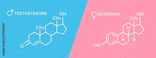 Estrogen and testosterone hormones symbol Canvas Print