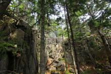 Anvil Trail, Acadia National Park, Maine