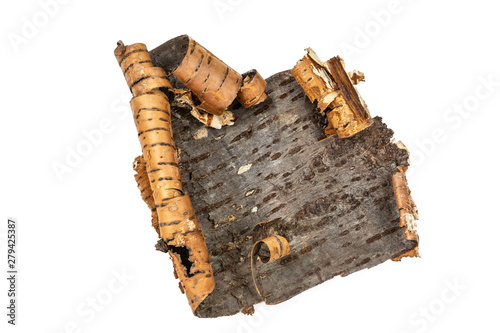 Birch bark. Detail, dry and shriveled on white a background Canvas Print