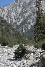 Mountain View Through Valley