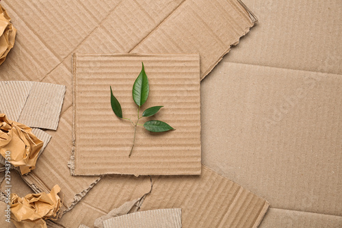 Fotografía Green leaves and crumpled paper on carton, top view with space for text