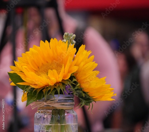 Close up of yellow flowers in a glass vase, with soft background