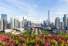 Lianhuashan Park, Shenzhen, Gu...