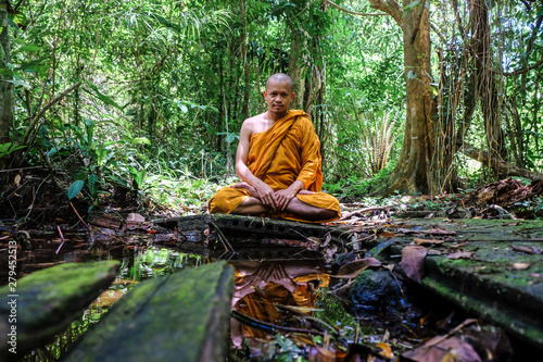 Foto auf Leinwand Olivgrun Buddhisg monk make meditation in deep forest