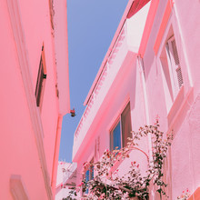 Bright Old Streets In Pink Infrared Style. Tropical Location. Minimal