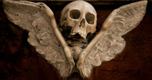 Skull With Wings As A Symbol O...