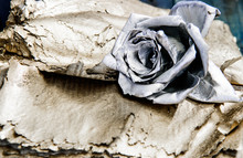 Silver Rose Flower. Wealth And...