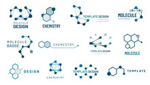 Hexagonal Molecule Badge. Molecular Structure Logo, Molecular Grids And Chemistry Hexagon Molecules Templates Vector Set