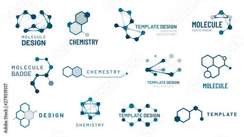 Obraz Hexagonal molecule badge. Molecular structure logo, molecular grids and chemistry hexagon molecules templates vector set - fototapety do salonu
