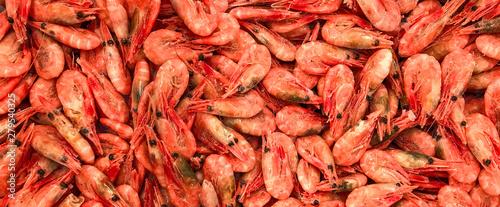 Cuadros en Lienzo  Seefood banner site of frozen shrimp color coral live