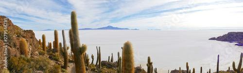 View from Isla Incahuasi on Salar de Uyuni, Altiplano, Salar de Uyuni, Bolivia Canvas Print