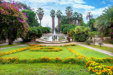 Beautiful Park Of Alfredo Nobe...