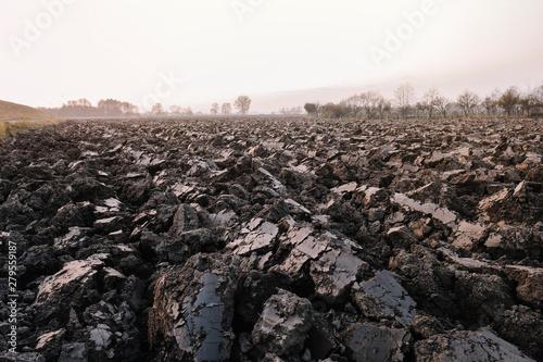 Photo Plowed soil