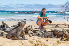 Ecotourism Tourist Photographe...