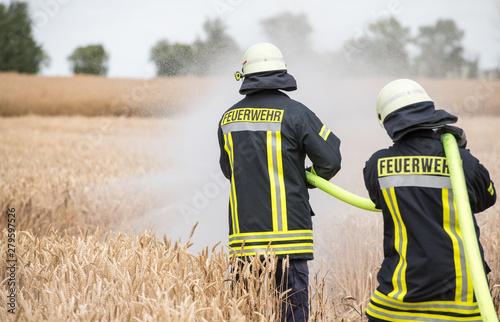 Fotografie, Obraz Feldbrand, Feuerwehr im Einsatz
