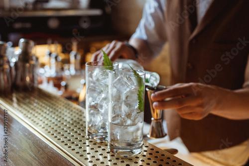 Fotografie, Obraz  Prepairing gin and tonic at the bar
