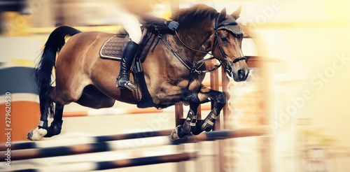 The brown horse overcomes an obstacle.Show jumping Fototapeta