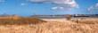 Strandszene mit Blick auf Laboe