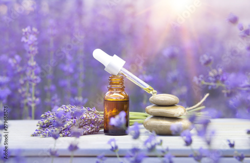 Fototapeta Essential lavender oil in the bottle with dropper on the gray wooden desk. Horizontal close-up. obraz