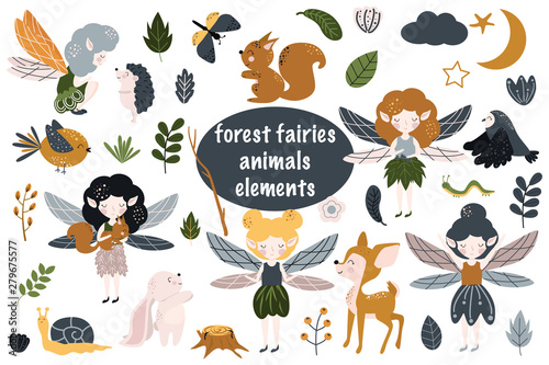 Fotografia, Obraz set of isolated forest fairies - vector illustration, eps