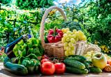 Fototapeta Fototapety do kuchni - Variety of fresh organic vegetables and fruits in the garden