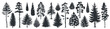 Pine tree silhouettes. Evergreen forest firs and spruces black shapes, wild nature trees templates. Vector illustration woodland trees set on white background