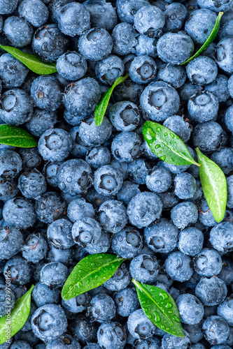 Fresh blueberries background with copy space for your text Wallpaper Mural
